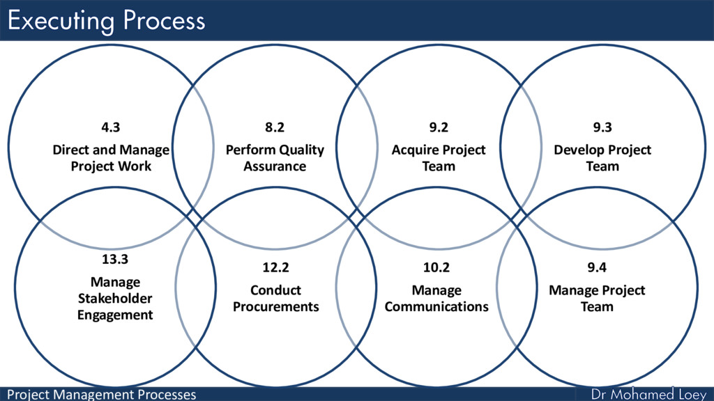 Project Management Processes 4.3 Direct and Man...