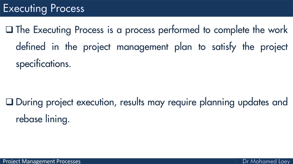 Project Management Processes  The Executing Pr...