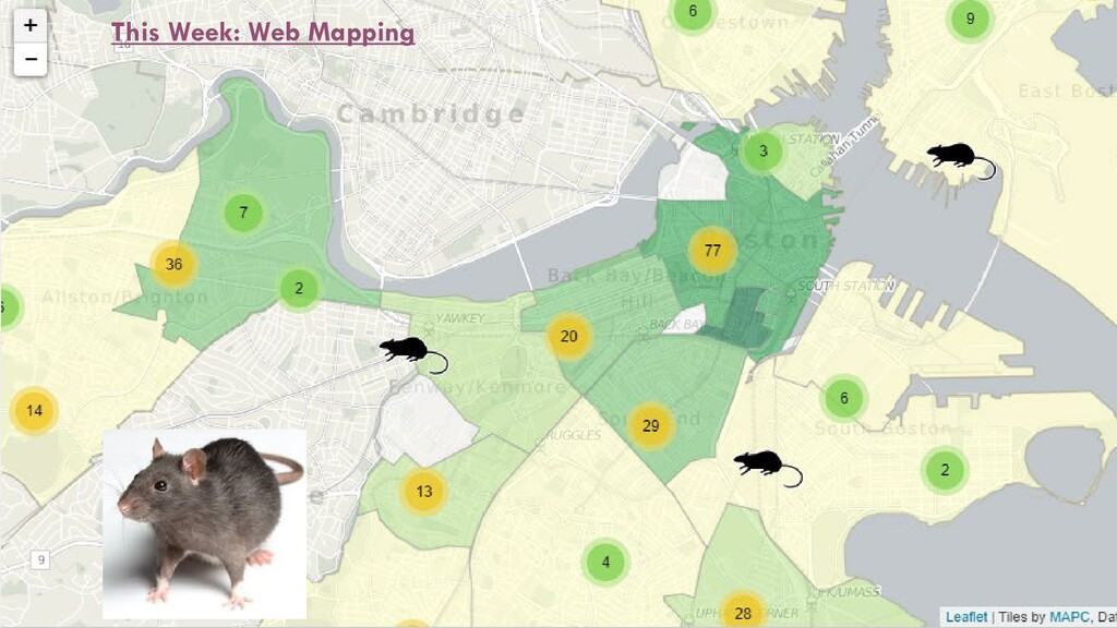 This Week: Web Mapping