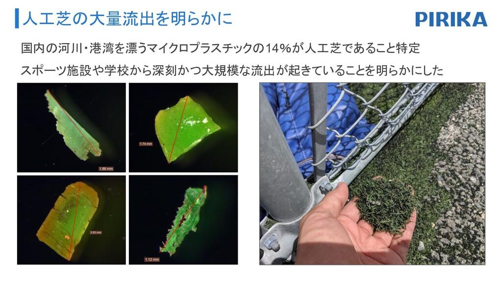 人工芝の大量流出を明らかに 国内の河川・港湾を漂うマイクロプラスチックの14%が人工芝であるこ...