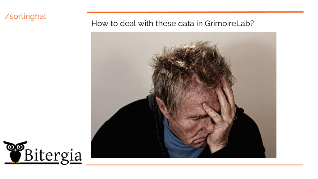 /sortinghat How to deal with these data in Grim...