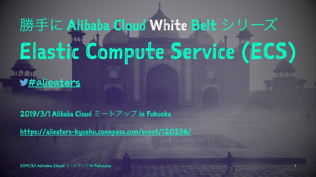 উखʹ Alibaba Cloud White Belt γϦʔζ Elastic Compu...