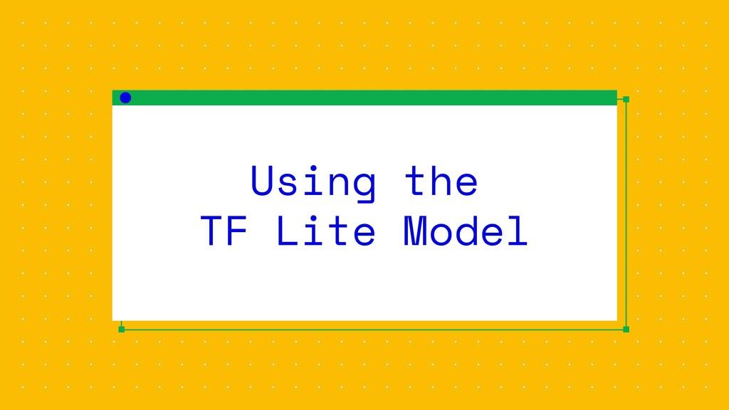 Using the TF Lite Model