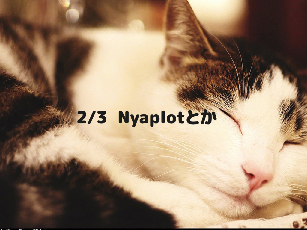 2/3 Nyaplotとか
