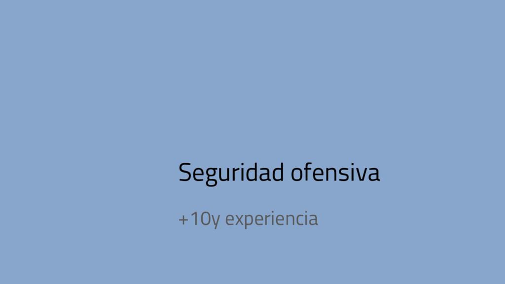 Seguridad ofensiva +10y experiencia