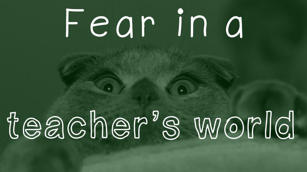 Fear in a teacher's world