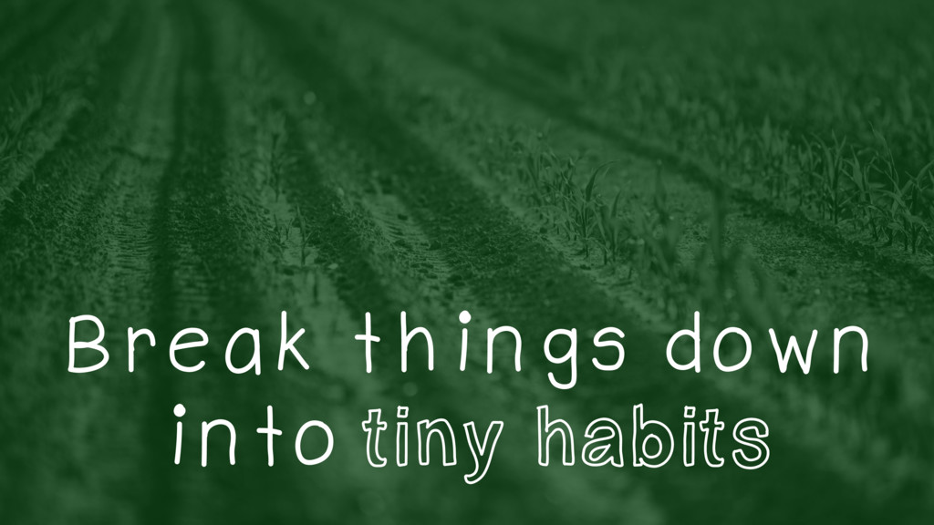 Break things down into tiny habits