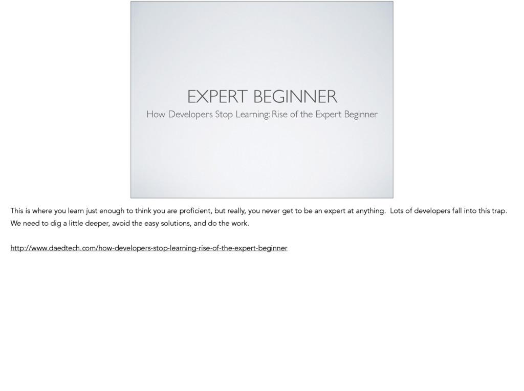 EXPERT BEGINNER How Developers Stop Learning: R...