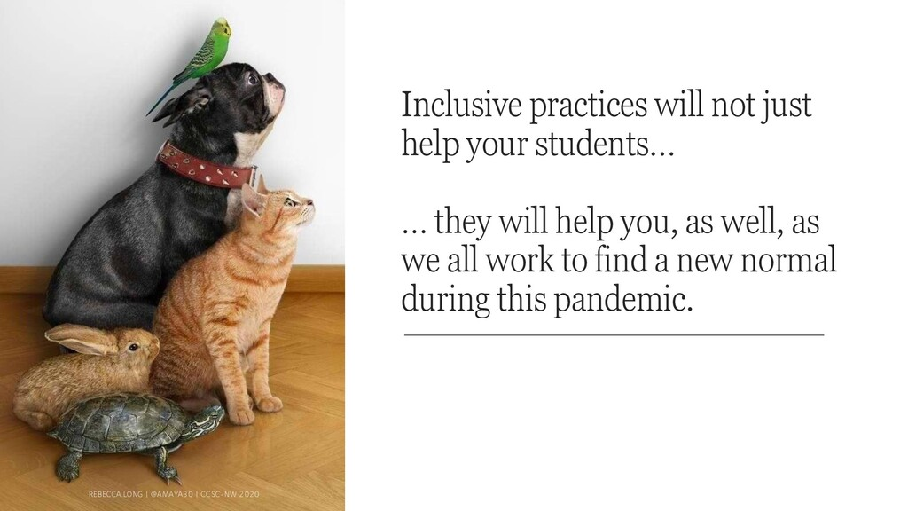 Inclusive practices will not just help your stu...