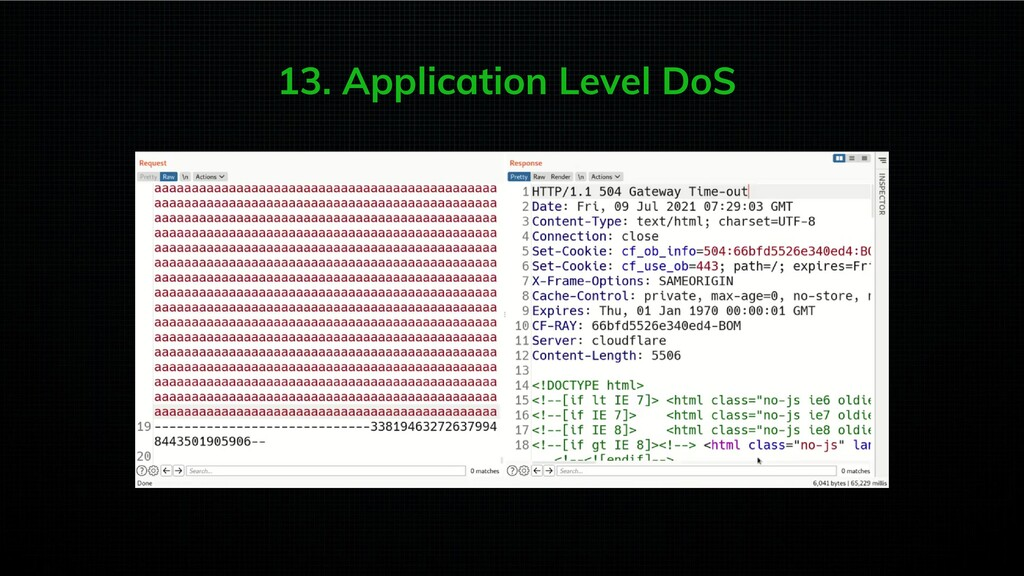13. Application Level DoS