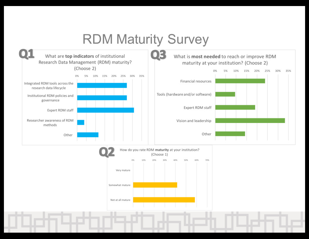 RDM  Maturity  Survey