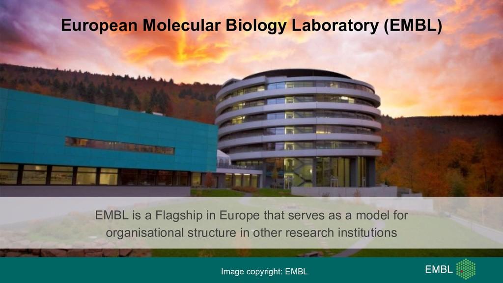 European Molecular Biology Laboratory (EMBL) Im...