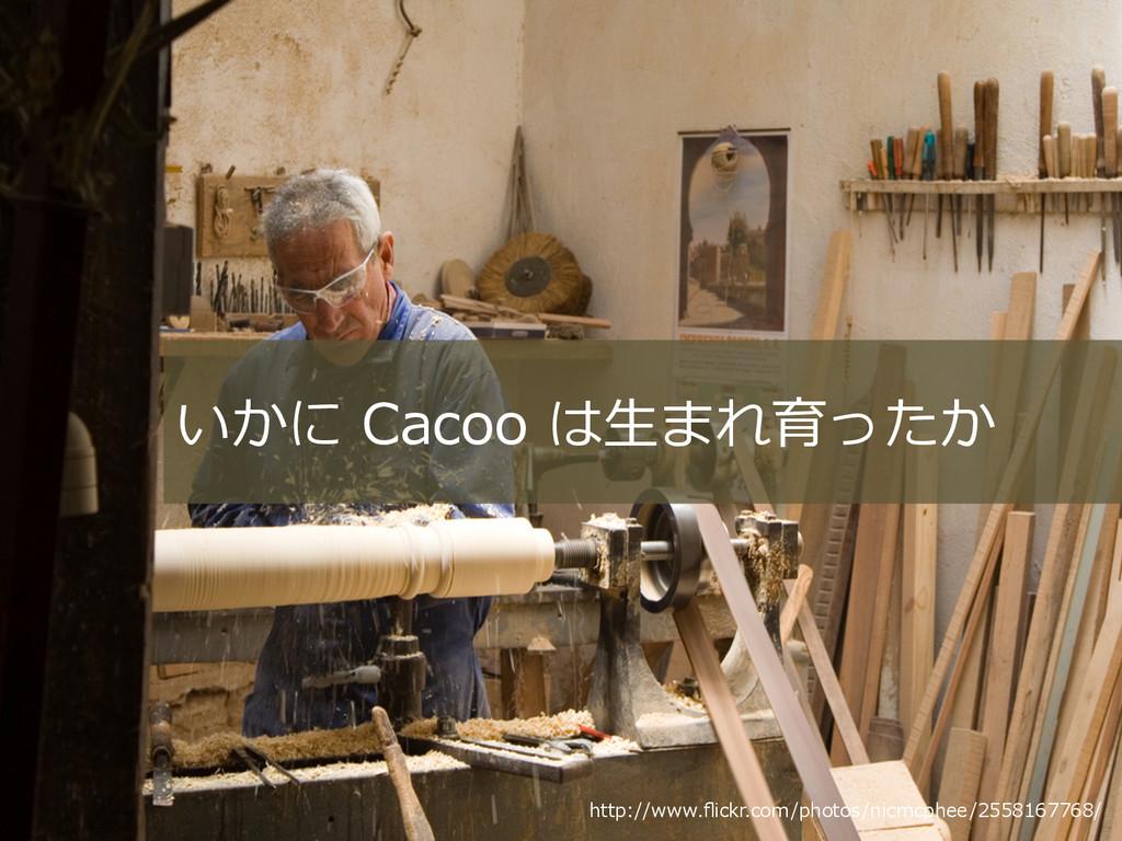http://www.flickr.com/photos/nicmcphee/255816776...