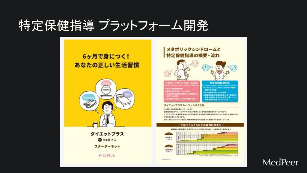 特定保健指導 プラットフォーム開発