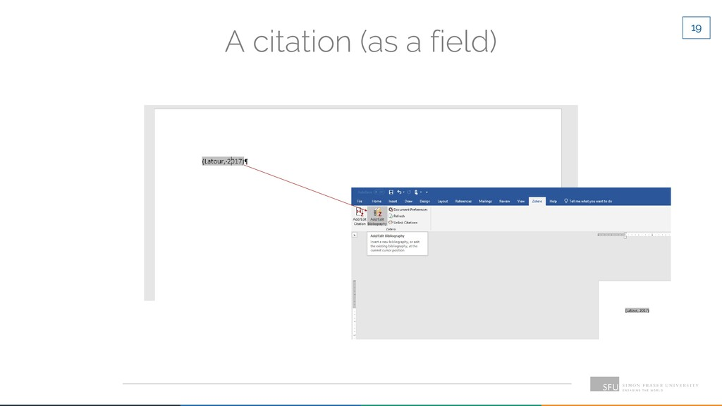 19 A citation (as a field)