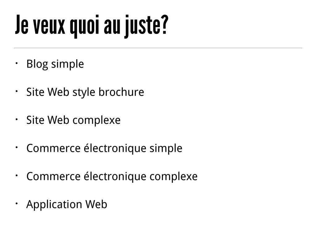 Je veux quoi au juste? • Blog simple • Site Web...