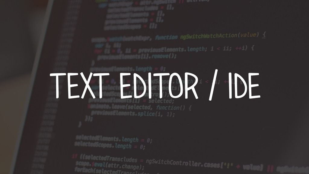 TEXT EDITOR / IDE