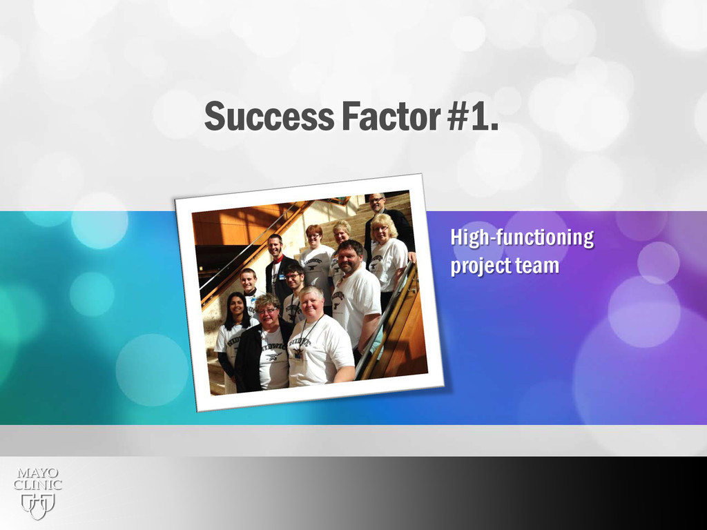 6 Success Factor #1. High-functioning project t...