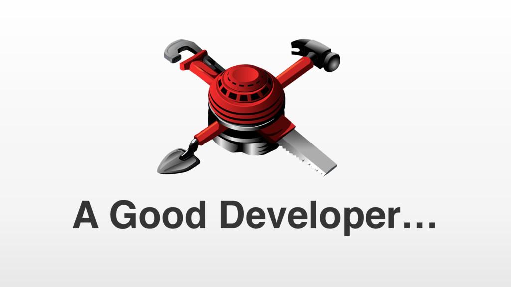 A Good Developer…