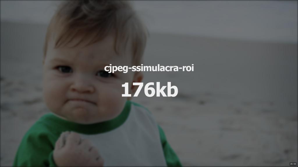 cjpeg-ssimulacra-roi 176kb 25 / 33