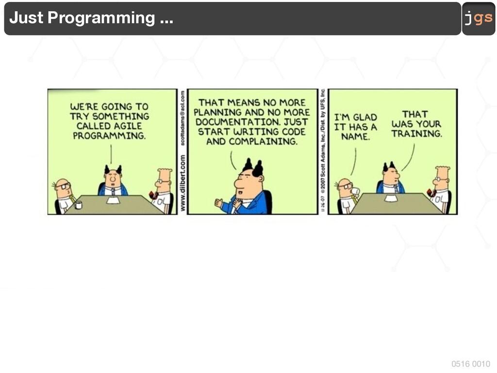 jgs 0516 0010 Just Programming ...