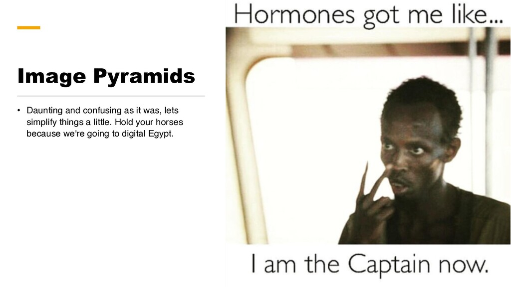 Image Pyramids • Daunting and confusing as it w...