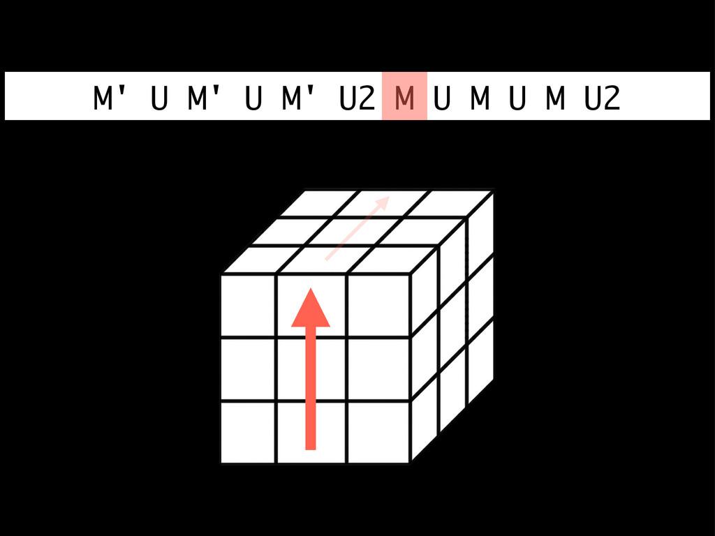 M' U M' U M' U2 M U M U M U2