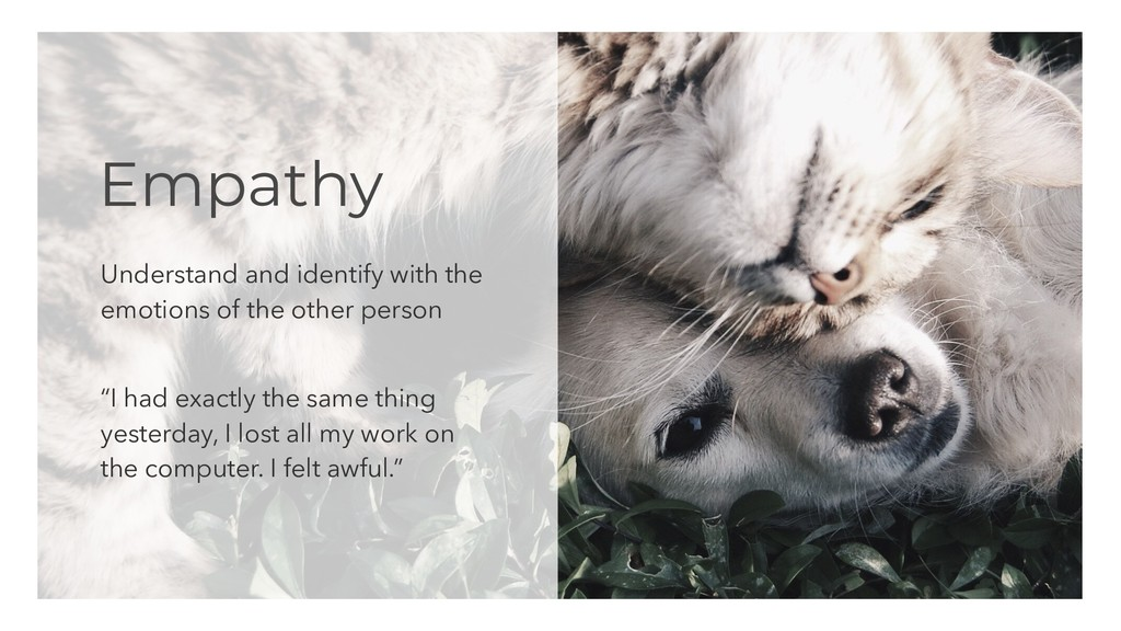 Empathy Understand and identify with the emotio...
