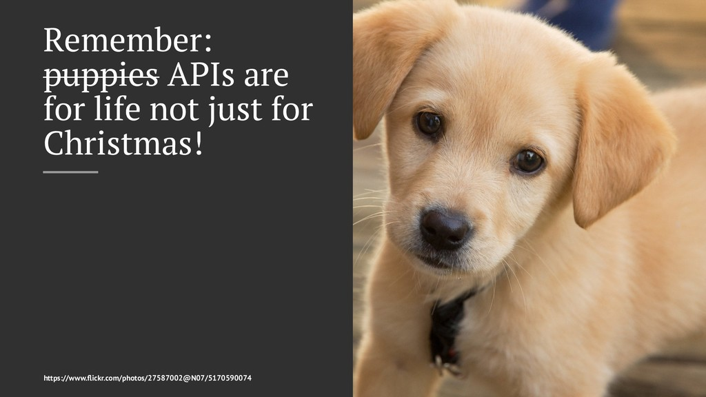 Remember: puppies APIs are for life not just fo...