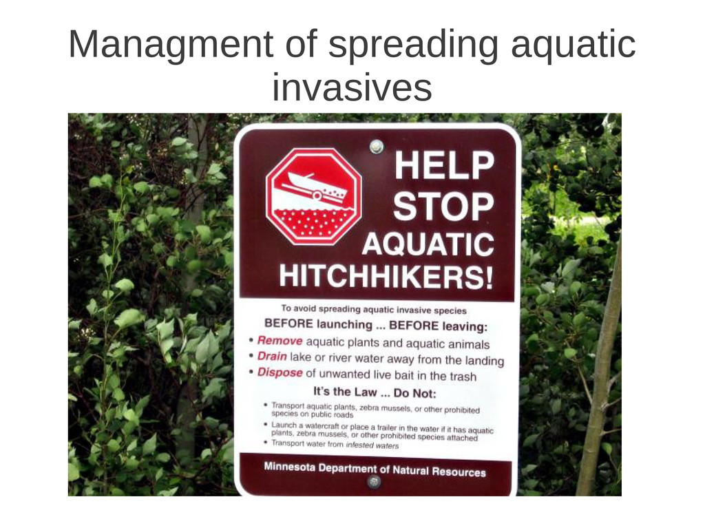Managment of spreading aquatic invasives
