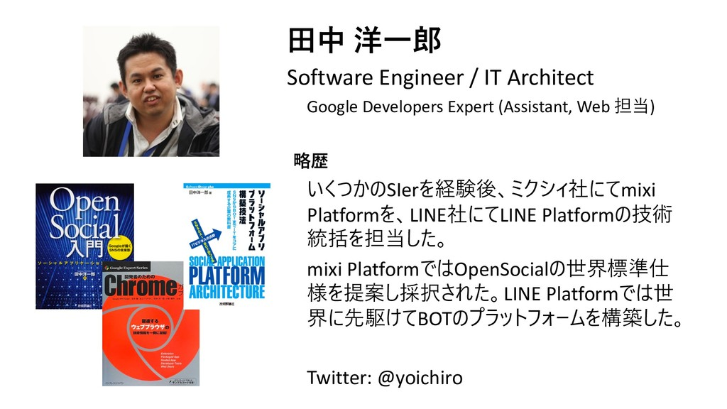 Software Engineer / IT Architect Google ...