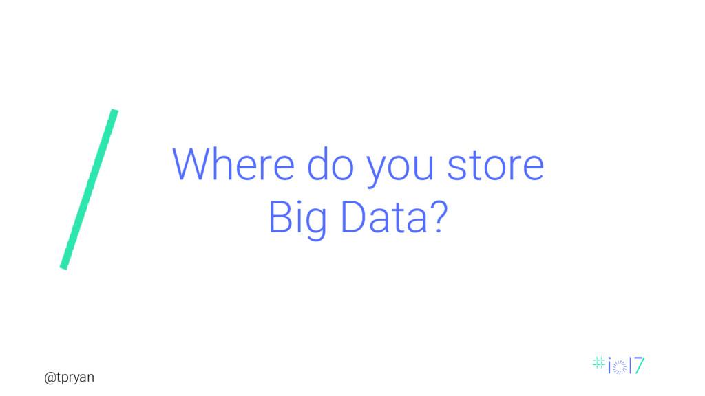 @tpryan Where do you store Big Data?