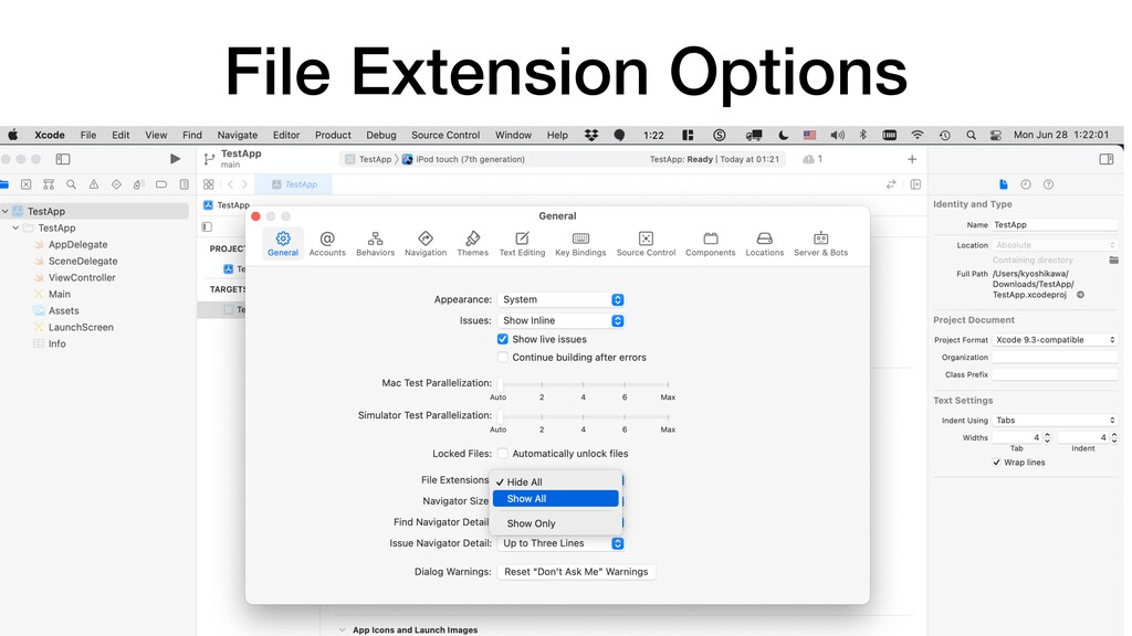 File Extension Options