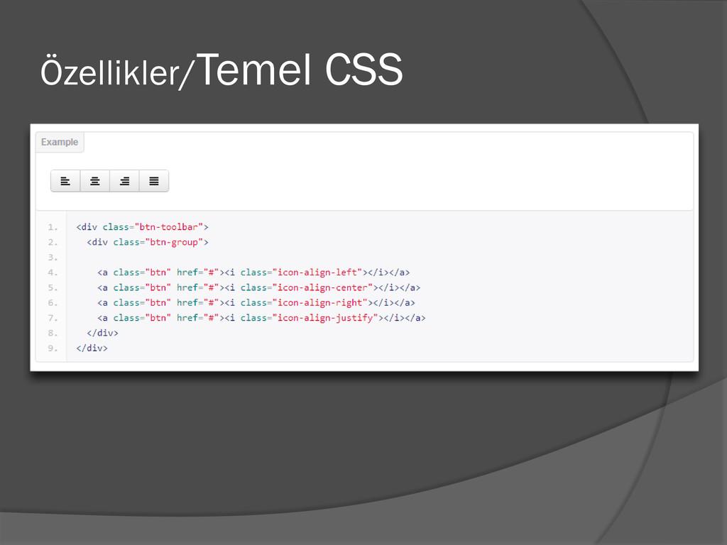 Özellikler/Temel CSS