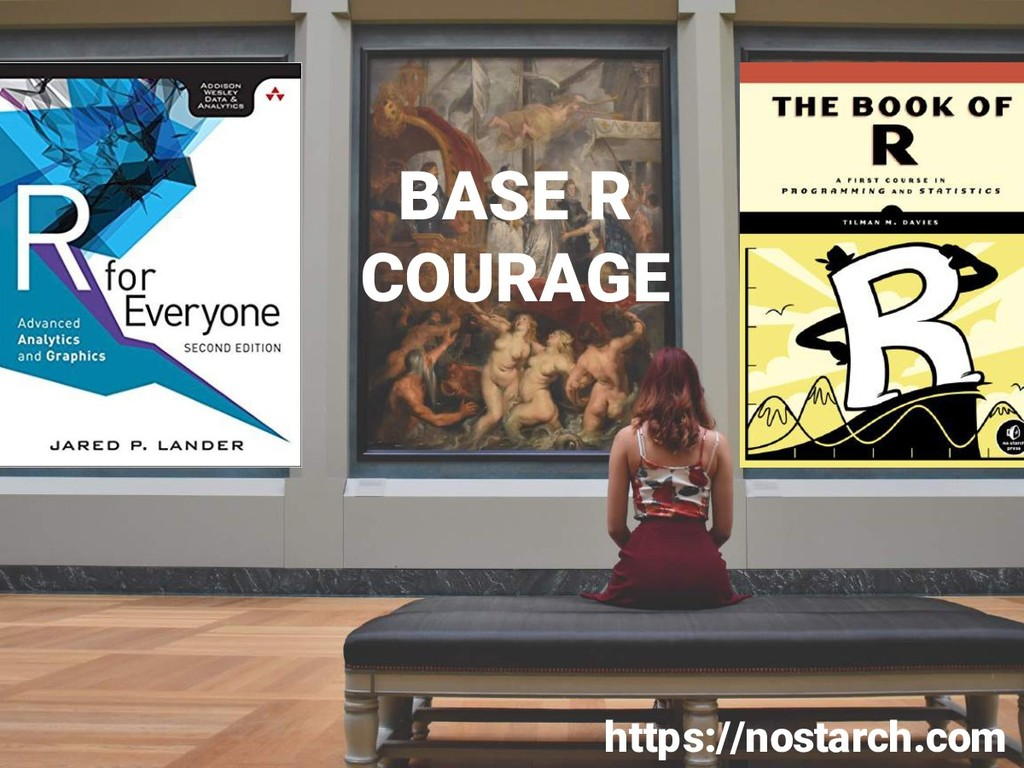 BASE R COURAGE https://nostarch.com