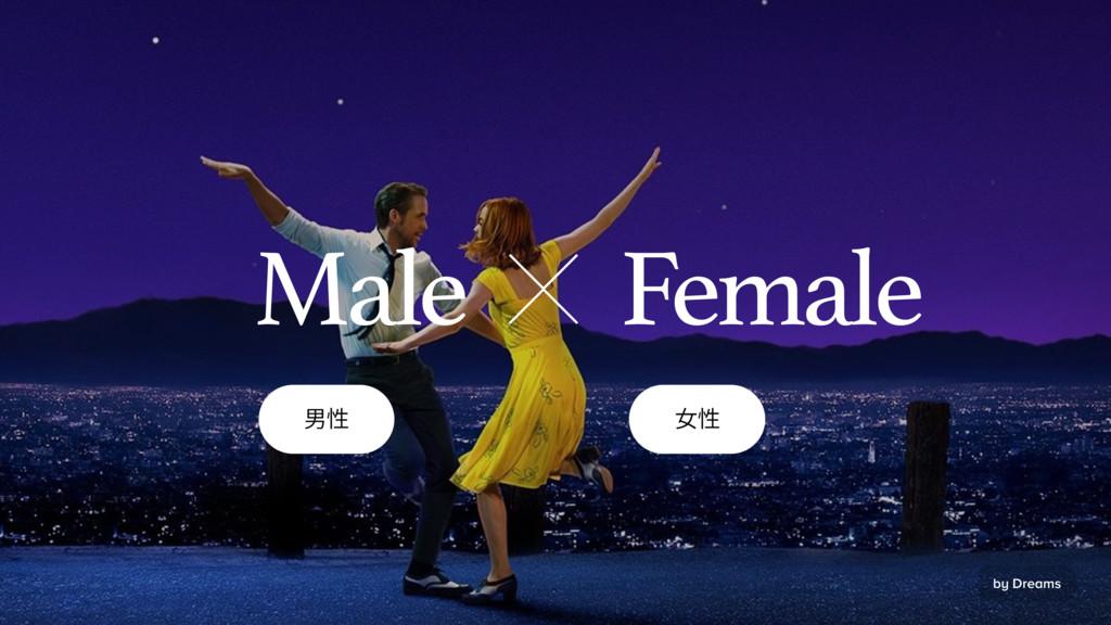 歑䚍 㥍䚍 Female Male by Dreams