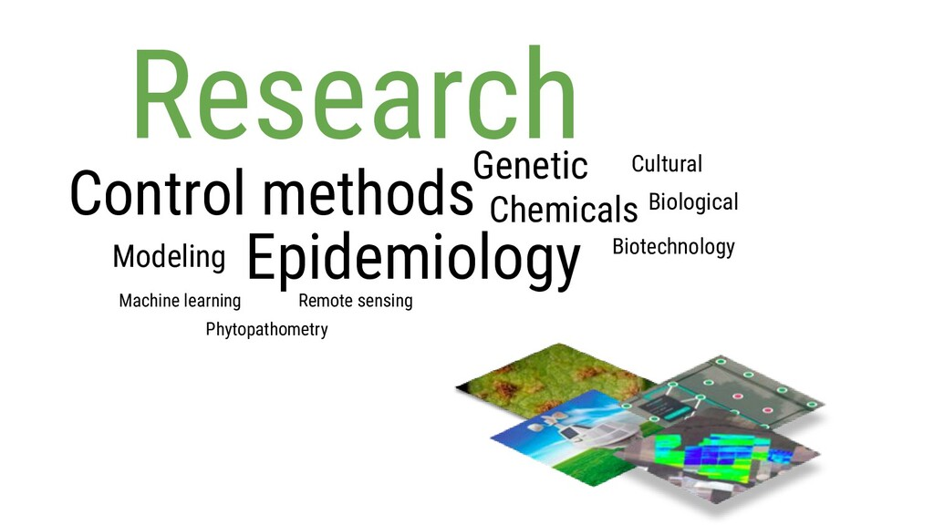 Epidemiology Research Control methods Chemicals...