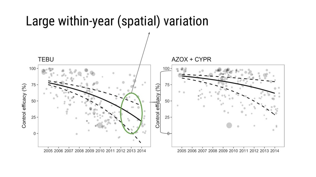 Large within-year (spatial) variation
