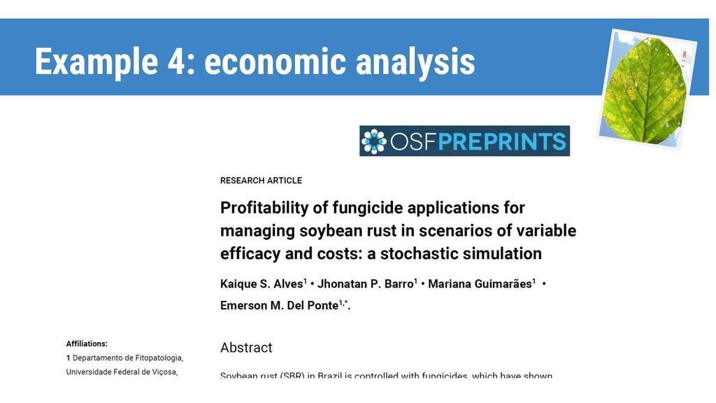 Example 4: economic analysis