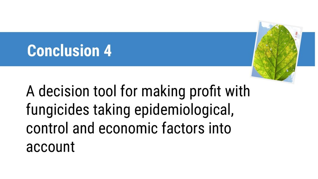 Conclusion 4 A decision tool for making profit w...