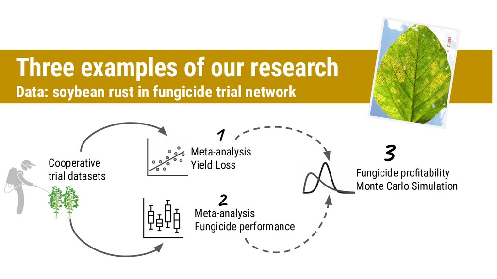 Three examples of our research Data: soybean ru...