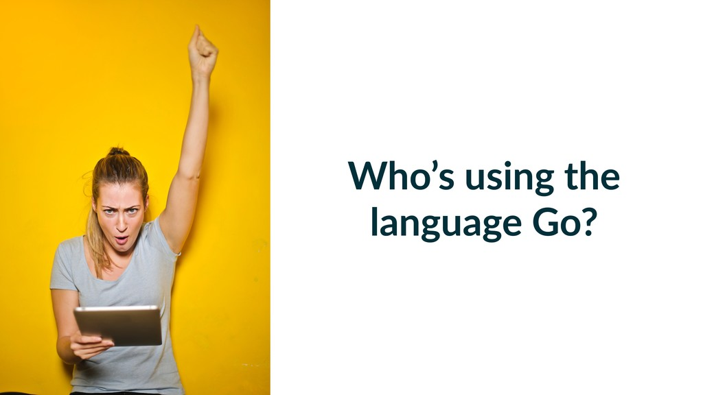 Who's using the language Go?