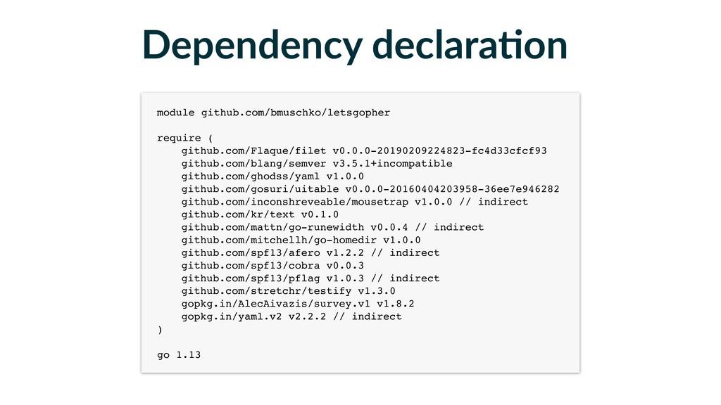 Dependency declaraFon module github.com/bmuschk...