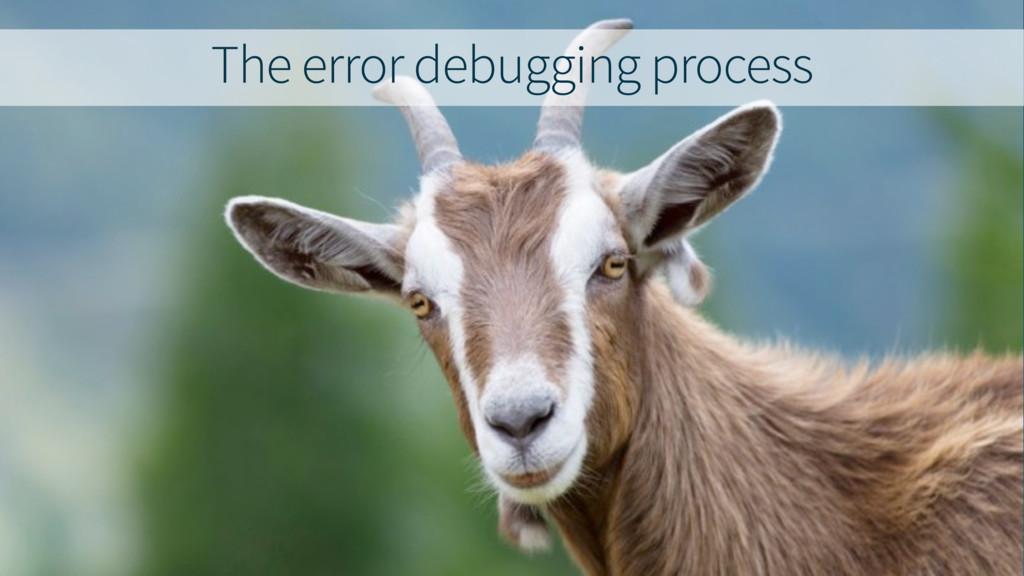 The error debugging process