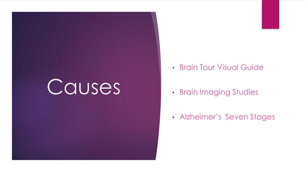 Causes • Brain Tour Visual Guide • Brain Imagin...