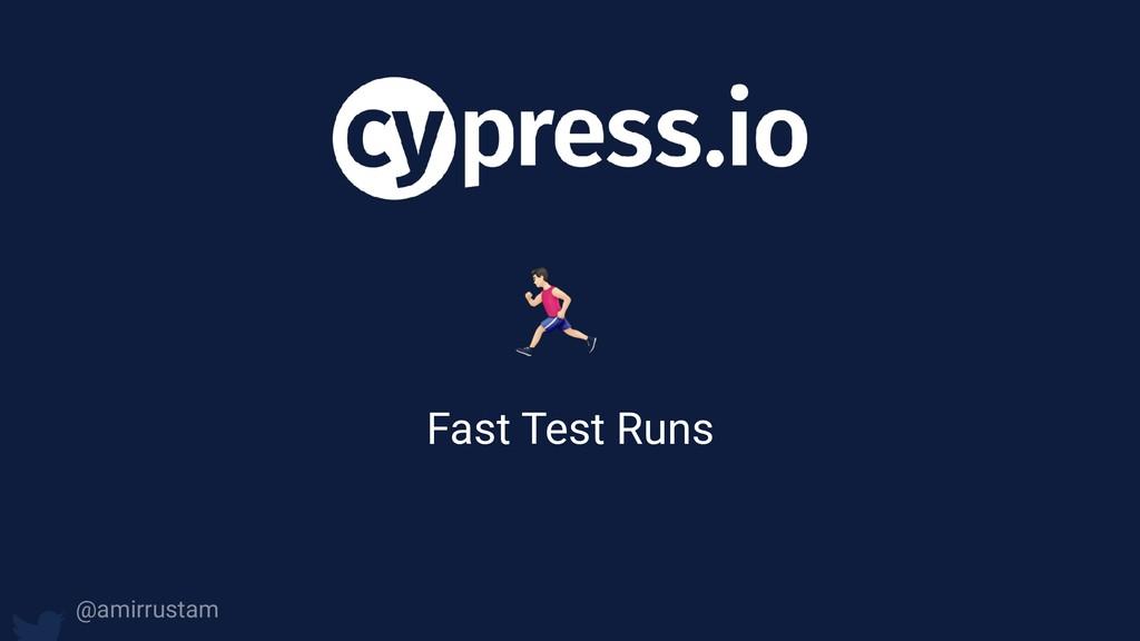 ) Fast Test Runs @amirrustam