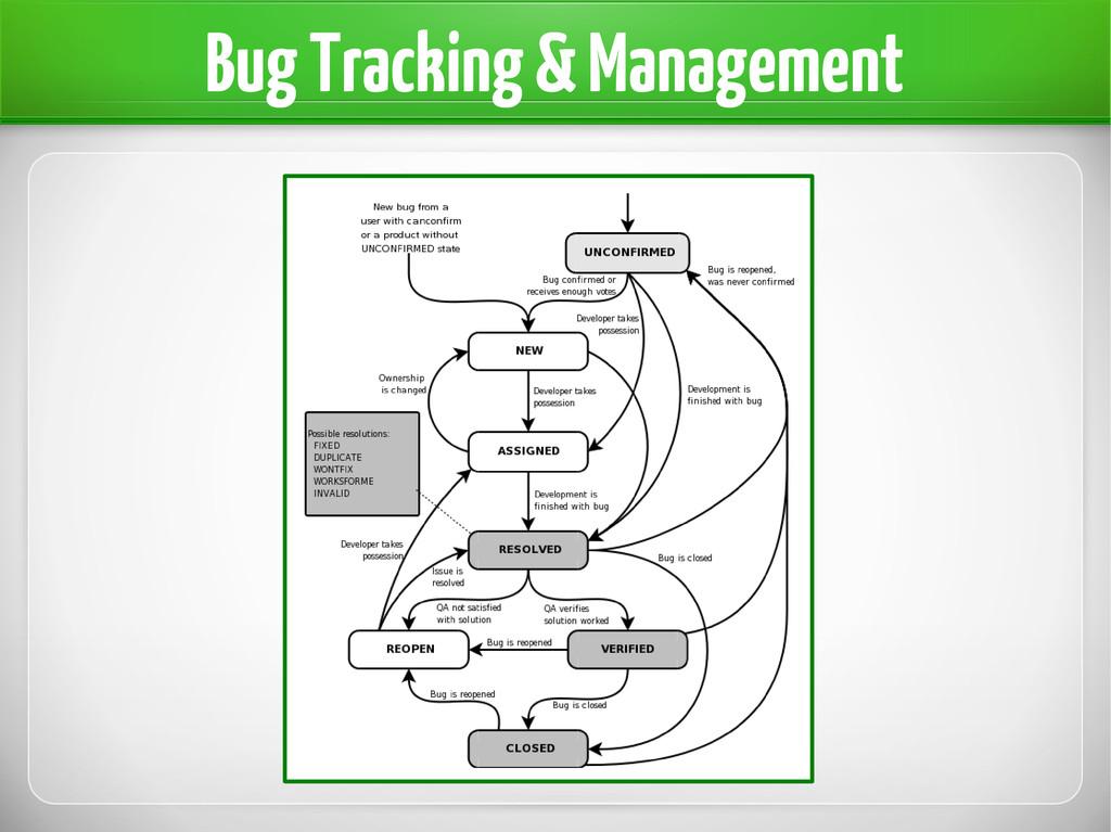 Bug Tracking & Management
