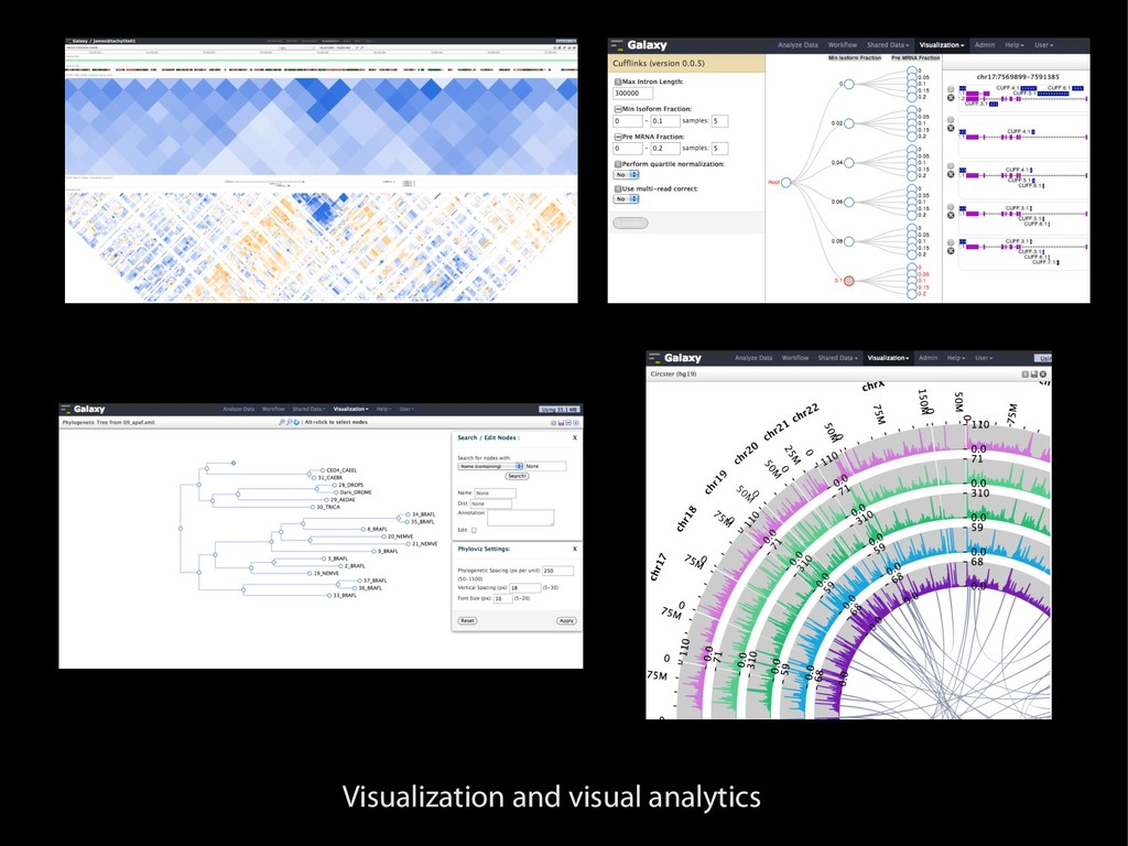 Visualization and visual analytics
