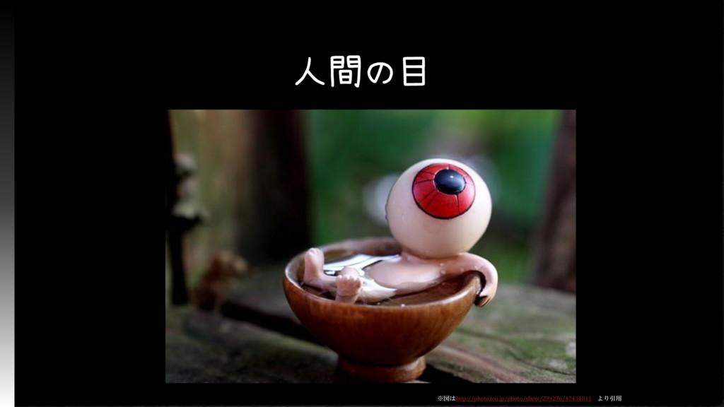 人間の目 ※図はhttp://photozou.jp/photo/show/299276/47...