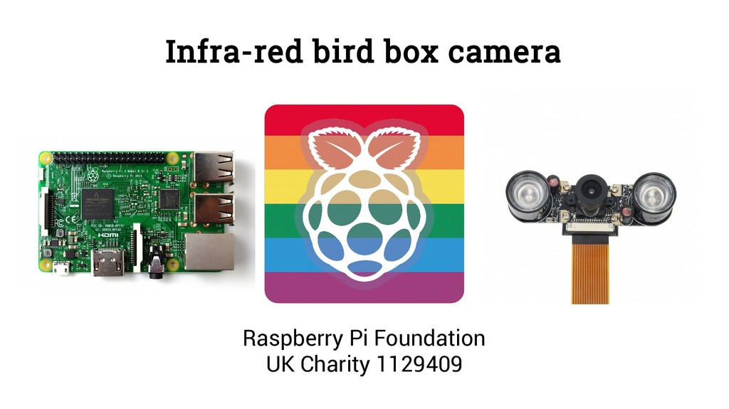Infra-red bird box camera Raspberry Pi Foundati...